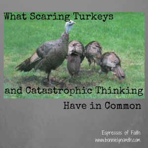 What Scaring Turkeys and Catastrophic Thinking Have in Common