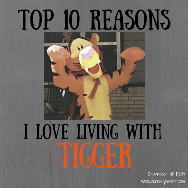 Top 10 Reasons I Love Living With Tigger