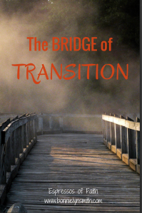 The Bridge of Transition