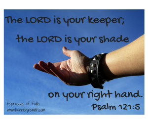 The LORD is your keeper;