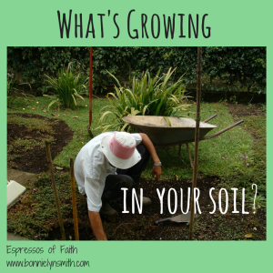 What Is He Planting in Your Soil?-2