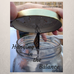 Hanging in the Balance
