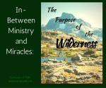 In-Between Ministry and Miracles: The Purpose of the Wilderness