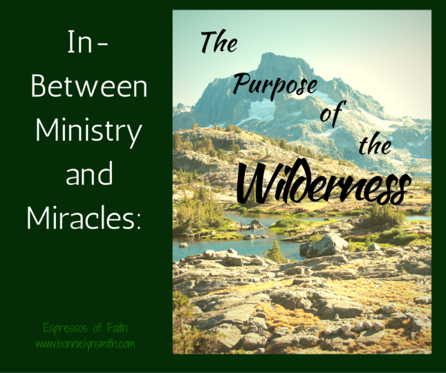 In-Between Ministry and Miracles_