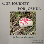 Our Journey For Joshua
