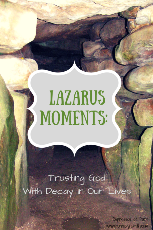 Lazarus Moments: Trusting God With Decay in Our Lives