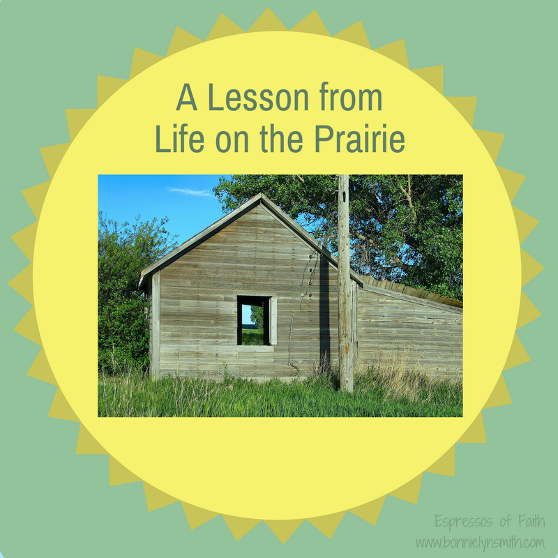 A Lesson from Life on the Prairie-2
