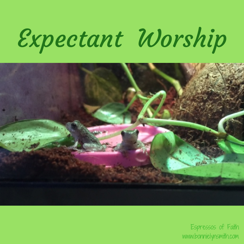 Expectant Worship